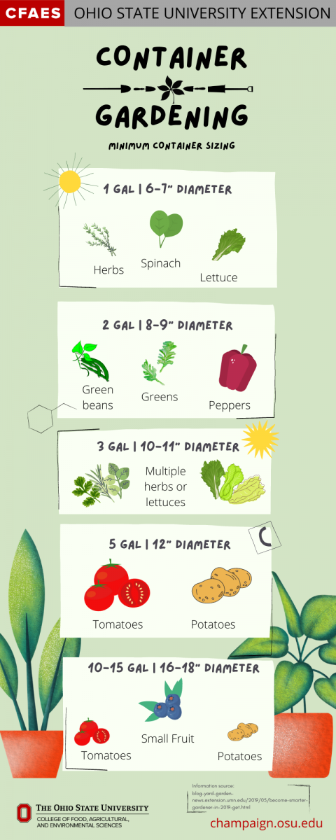 container gardening infographic